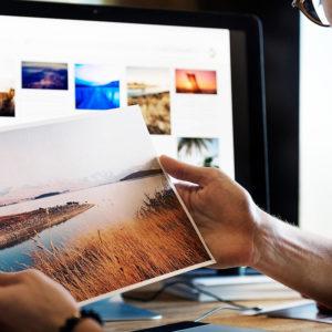 Купить картину онлайн. Несколько советов